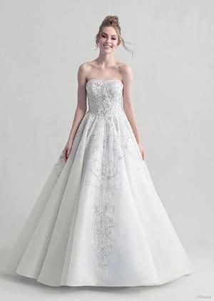Cinderella Platinum Collection Wedding Dress
