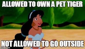 Jasmine meme not allowed to go outside